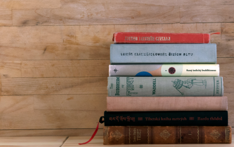 Reader or Not, You Will Love These Books