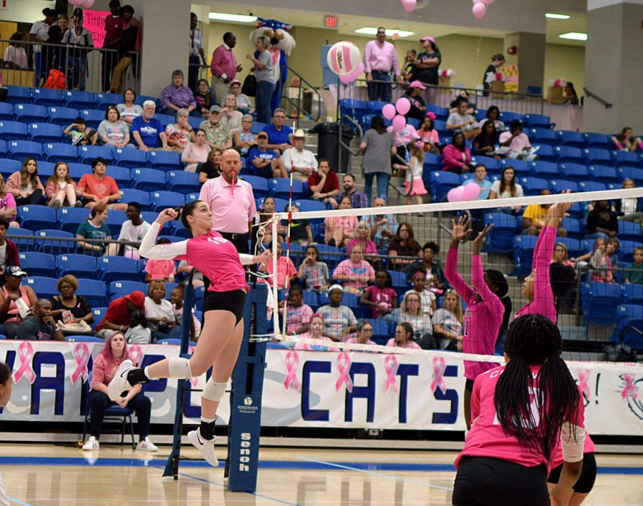 Lady Cats Host Pink Night