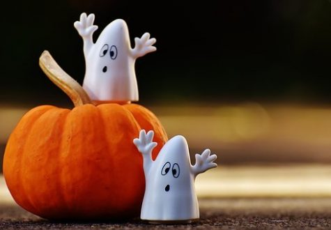 Students Change Halloween Plans to Abide by Covid Restrictions