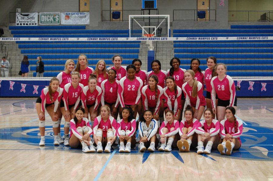 The Lady Cats pose in their pink jersey on Pink Out night September 24.